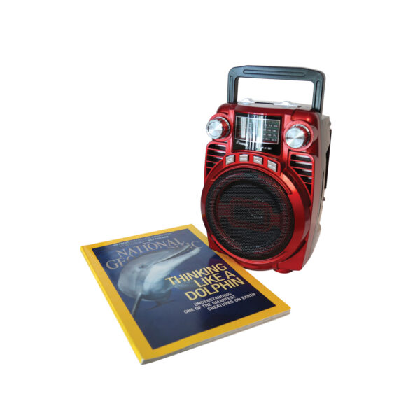 Portable USB FM Radio Bluethooth Speaker Music Player with Foldable handle In Red