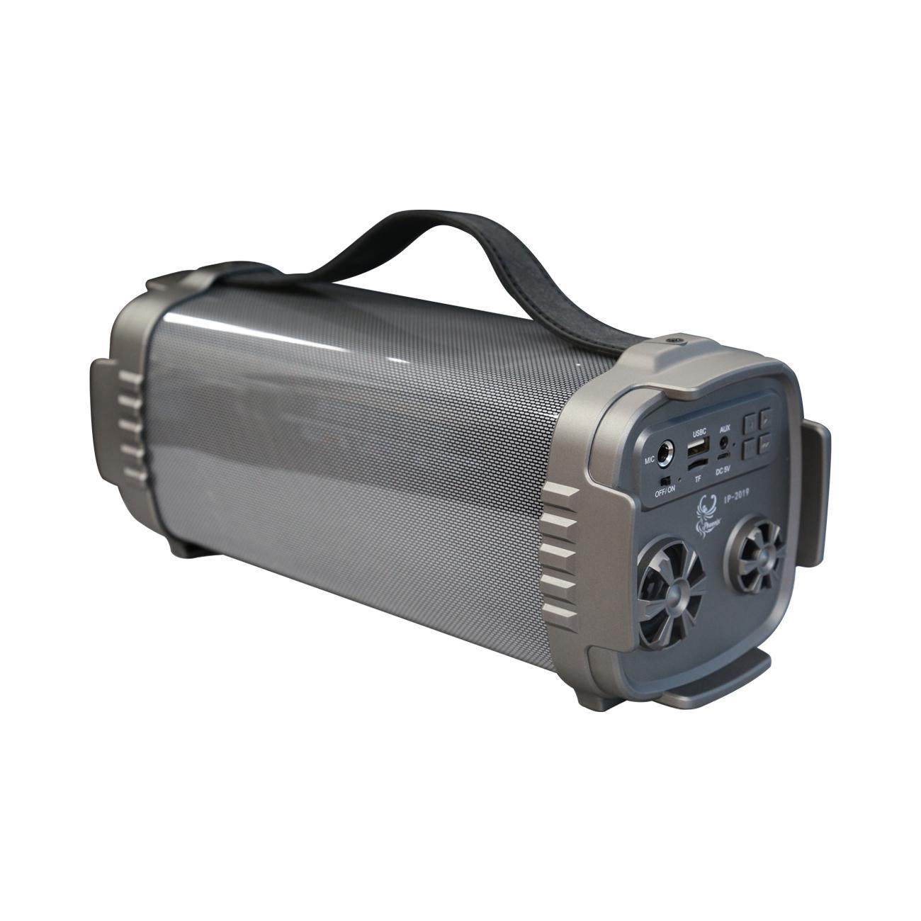 iPhoenix Digital Speaker In Gray
